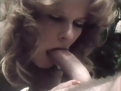 Sucking A Big Dick By Someone's skin Pool